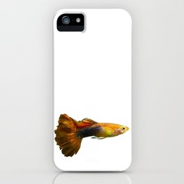 Guppy Fish iPhone Case