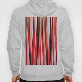 Red Adventure Striped Abstract Pattern Hoody
