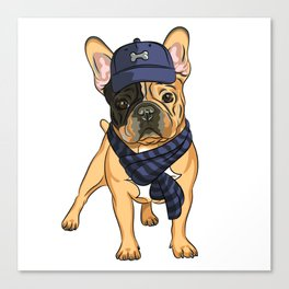 Cute puppy pug in baseball hat and scarf. Canvas Print