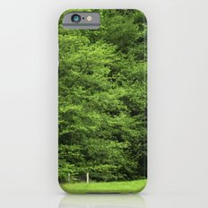 bosque iPhone 6s Slim Case