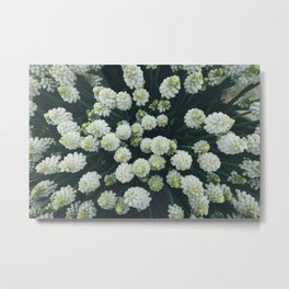 Spring Flowers From Above Metal Print