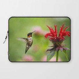 Hummingbird XVII Laptop Sleeve