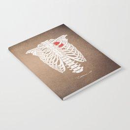 SKELETON Notebook