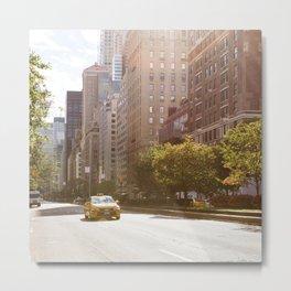 Park Avenue Metal Print