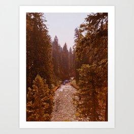 Wild love Art Print