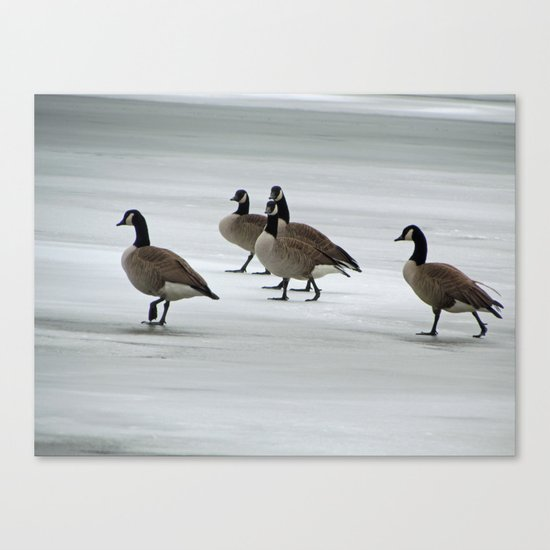 Graceful Geese Canvas Print