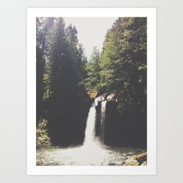 Hidden Forest Waterfall in Pacific Northwest Art Print