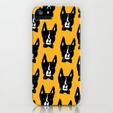 Boston Terriers iPhone (5, 5s) Slim Case