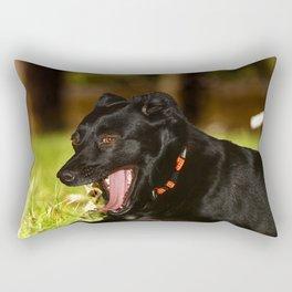 Quod nigrum Diva Rectangular Pillow