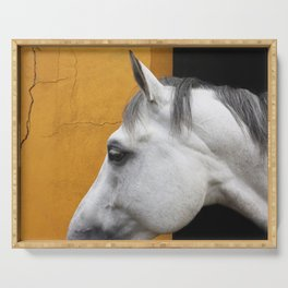 Cleo - Fine art horse print Serving Tray