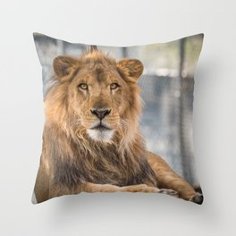 Lambert the Lion All Grown Up Throw Pillow