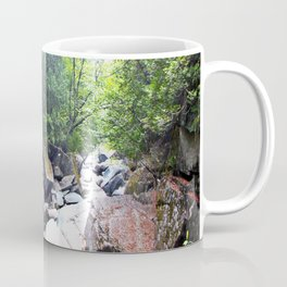 Walking Through the Falls Coffee Mug