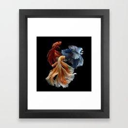 BEAUTIFUL BETA FISH Framed Art Print