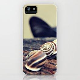 Cat Snails iPhone Case