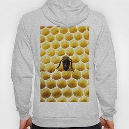 Geometric Bee Hoody