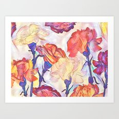 Painted Carnations Art Print