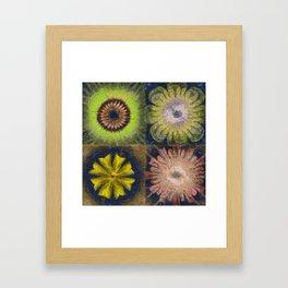 Methylator Structure Flowers  ID:16165-011604-36970 Framed Art Print