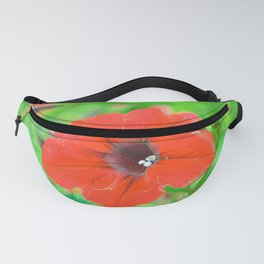 Red velvet by #Bizzartino Fanny Pack