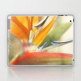 Bird of Paradise - Strelitzea reginae - Tropical Flowers of Hawaii Laptop & iPad Skin