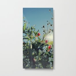 poppy flower no14 Metal Print