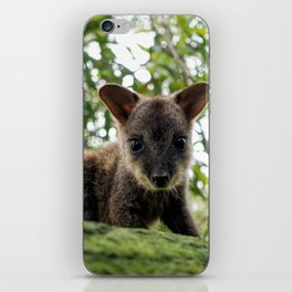 Baby Wallaby iPhone Skin