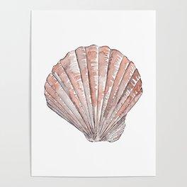 Seashell #3 Poster