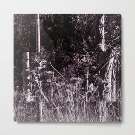 Gnome Forest Metal Print