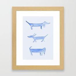 The Blue Dachshund Framed Art Print