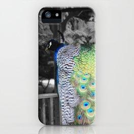 Fascinator iPhone Case