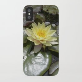 yellow water lily VII iPhone Case