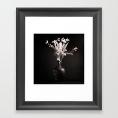 Old White Tulips Framed Art Print
