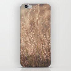 Sunset in the Field iPhone & iPod Skin