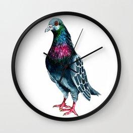 Seymour the pigeon Wall Clock