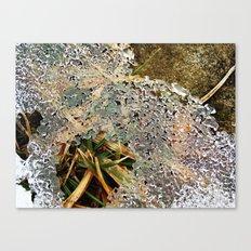 Nature Frozen Over Canvas Print