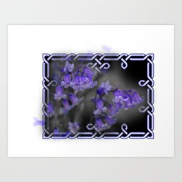 Bluebells in Celtic knot frame Art Print