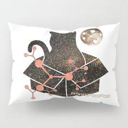 Schrodinger's Catsmic FooFoo Pillow Sham