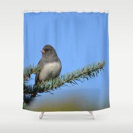 Backyard Beauty Shower Curtain