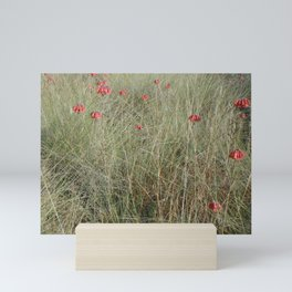 Field of Red Mini Art Print