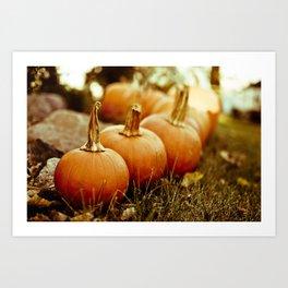 seven little pumpkins Art Print