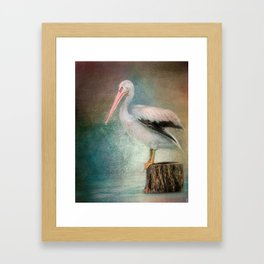 Perched Pelican Framed Art Print