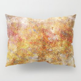 Mod Nature Trail Multicolor Pattern Pillow Sham