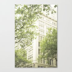 green in the grey Canvas Print