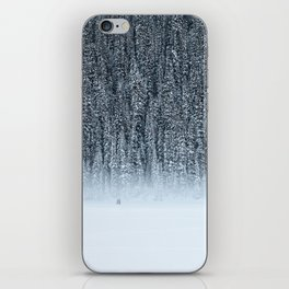 Winter Wander iPhone Skin