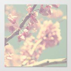 popcorn blossoms Canvas Print