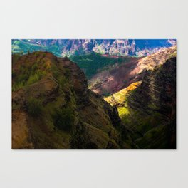 In shadows and light Canvas Print