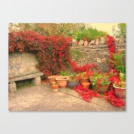 The Terracotta Garden. Canvas Print