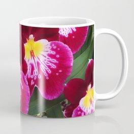 Tolumnia Coffee Mug