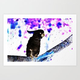 Ink Spots of the Black Feathered Cockatoo Art Print
