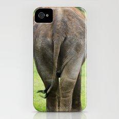 Elephants Rear Slim Case iPhone (4, 4s)
