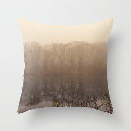 Foggy springtime Reflections Throw Pillow